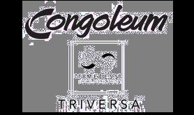 Triversa by Congoleum